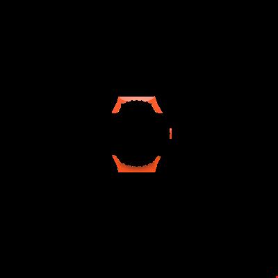 Picture of Orange Case