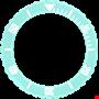 Picture of Aquamarine Bezel